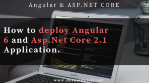 How to deploy Angular 6 and Asp Net Core Application in IIS 8?
